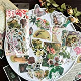 60PCS Fable Washi Decals for Decoration, Doraking DIY Vintage Decoration Stickers for Windows, Laptop, Scrapbooks, Album (Fab