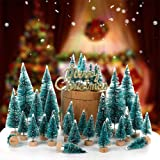 Orgrimmar 24 PCS Mini Christmas Trees Artificial Sisal Trees Snow Frost Ornaments Bottle Brush Trees with Wooden Bases for Ch