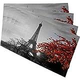 Mugod Eiffel Tower Placemats Grey Paris Eiffel Tower with Cityscape Red Flower Decorative Heat Resistant Non-Slip Washable Pl