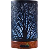 Aromatherapy Essential Oil Diffuser, Metal Cover Oil Diffuser, Waterless Auto Shut-Off,Ultrasonic Cool Mist Humidifier,7 Colo