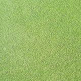 【種 2kg】 ベントグラス CY-2 シーワイツー コート種子 芝生用 緑肥 [播種期:3~10月] 雪印種苗 米3【代引不可】