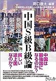 中国S級B級論 ―発展途上と最先端が混在する国