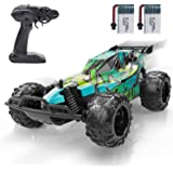 Remote Control Car, DEERC RC Cars Stunt Car Toy, 2.4Ghz 20 KM/H High Speed Racing RC Car with 2 Rechargeable Batteries for 60
