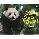 カレンダー2019 こっちむいてシャンシャン! ([カレンダー])