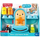 Fisher-Price GJW26 Stack and Rattle Birdie Toy