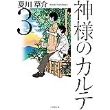 神様のカルテ (3) (小学館文庫)