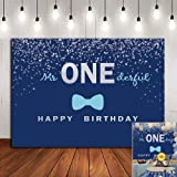 Silver and Blue Tie Mr Onederful Photo Background for Baby Boys Happy 1st Birthday Party Banner Photography Backdrop Decorati