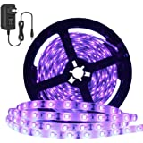 YGS-Tech 24 Watts UV Black Light LED Strip, 16.4FT/5M 3528 300LEDs 395nm-405nm Waterproof IP65 Blacklight Night Fishing Steri