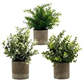 "Zcaukya Small Potted Artificial Plants, Artificial Eucalyptus Plants Fake Rosemary White Baby's Breathe 9.5"" Plastic Greenery"