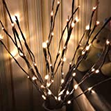 3 Pack Warm White Lighted Branches 60 Led Artificial Tree Lights Willow Twig Lamp for Decoration Battery Operated