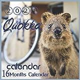 2021 Quokka Calendar: short-tailed scrub wallaby Australian Animal 8.5x8.5 Inch Wall 2021 Calendar