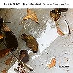 シューベルト: ピアノ・ソナタ集Vol.2