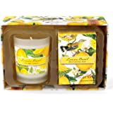 Michel Design Works Lemon Basil Candle and Soap Gift Set, Lemon Basil