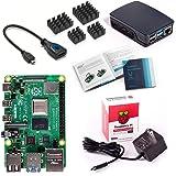 Vilros Raspberry Pi 4 Model B Basic Starter Kit with Official Raspberry Pi Case (Black/Grey) (8GB, Black/Grey)