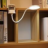 Miday Clip on Lamp,Battery Powered Reading Lamp,Clip on Light for Bed Clip on Battery Light with 3 Brightness Level,USB Recha