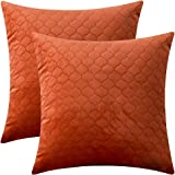 Rythome Set of 2 Decorative Pattern Throw Pillow Cases, Comfortable Quilted Velvet Cushion Covers for Sofa Couch and Bed, Pat