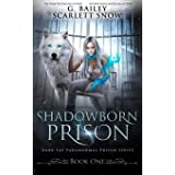 Shadowborn Prison: 1