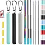 Metal Straws, Funbiz 3 Pack Reusable Collapsible Stainless Steel Straw with Plastic Case Silicone Tip and Long Cleaning Brush