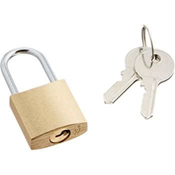 エレコム 南京錠 幅25×奥行11×高さ51mm 真鍮 鍵2本付 ESL-NK