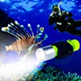 BlueFire 1100 Lumen CREE XM-L2 Professional Diving Flashlight, Bright LED Submarine Light Scuba Safety Lights Waterproof Unde