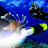 BlueFire 1100 Lumen CREE XM-L2 Professional Diving Flashlight, Bright LED Submarine Light Scuba Safety Lights Waterproof Unde