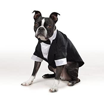 14dff04619e03 犬用 タキシード 黒 ウェディング 蝶ネクタイ ドッグウェア ペットグッツ XS S M L (XS)