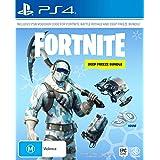 Fortnite Deep Freeze Bundle - PlayStation 4