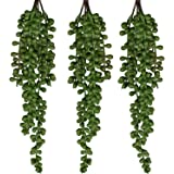 SEEKO Hanging String of Pearls - Realistic Hanging Succulents Plants Artificial for Faux Plants Indoor Plants Decor – Hanging