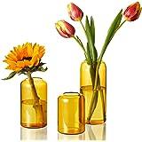 ZENS Glass Vase Set of 3, Modern Small Clear Bud Vases for Home Decor Flowers, Hand Blown Medium Amber Borosilicate Vase Set