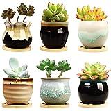 Brajttt 2.5 Inch Ceramic Succulent Planter Pot with Drainage,Planting Pot Flower Pots,Small Planter Pots for Mini Plant Ceram