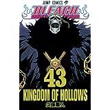 BLEACH 43 (ジャンプコミックス)