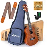 Horse Concert Ukulele 23 Inch Sapele Ukelele Uke Starter Kit for Beginners with Gig Bag Strap Strings Tuner