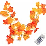 Thanksgiving Decorations Lighted Fall Garland Thanksgiving Decor Halloween String Lights 8.2 Feet 20 LED Thanksgiving Gift