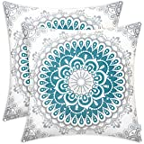 CaliTime Pack of 2 Cozy Fleece Throw Pillow Cases Covers for Couch Bed Sofa Farmhouse Decoration Dahlia Floral Medallion Comp