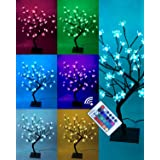 Lightshare 18 Inch Cherry Blossom Bonsai Tree, 48 LED Lights, RGB with Remote Control, 16 Color-Changing Modes, 24V UL Listed