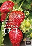 まるごとわかるイチゴ: 基礎知識、栽培技術、品種解説、海外動向まで完全網羅 (「農耕と園藝」ブックス)