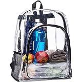 Big Clear Backpack