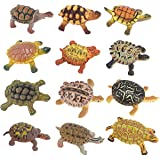 Realistic Sea Turtle Miniature Figurines - 12 Unique Turtles Detailed and Hand Painted Reptile Toys for Kids