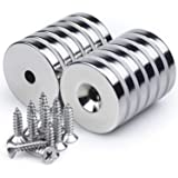 Neodymium Disc Countersunk Hole Magnets, 1.26 inch x 0.2 inch Strong Permanent Rare Earth Magnets with Screws - Pack of 12