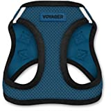 Best Pet Supplies, Inc. Voyager Step-in Air Dog Harness - All Weather Mesh, Step in Vest Harness for Small and Medium Dogs