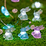 Easter Rabbit Decorations Lights, Impress Life Bunny Festive String Fairy Lights Battery with Remote for Indoor Outdoor Weddi
