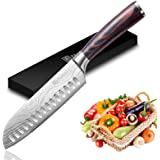 Santoku Knife - PAUDIN Super Sharp Kitchen Knife, 7 inch Multifunctional Japanese Chef Knife, German High Carbon Stainless St