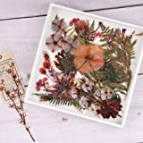 Flower and Leaves Sticker Set, NogaMoga 4 Packs Decorative PET Flowers and Plant Series Decals for Scrapbook, Planner, Bullet