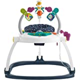 Fisher-Price GPT46 Astro Kitty SpaceSaver Jumperoo