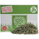 Small Pet Select 25-Pound 2nd Cutting Timothy Hay Pet Food