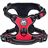 PoyPet No Pull Dog Harness, No Choke Reflective Oxford Outdoor Vest, Adjustable Pet Harnesses with 2 Leash Clips, No Choke Re