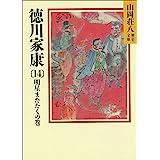 徳川家康(14) 明星瞬くの巻 (山岡荘八歴史文庫)