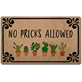 """Z plus Welcome Mats 30""""(L) x 18""""(W) Personalized Funny Door Mats for Entrance Way/Kitchen Rugs and Mats/Front Door Mats Anti-"""