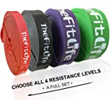TheFitLife Resistance Pull Up Bands - Pull-Up Assist Exercise Bands, Long Workout Loop Bands for Body Stretching, Powerliftin