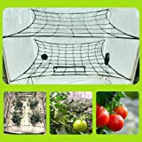 Megaluxx Dual Layer 2-Pk Flexible Elastic Plant Support Trellis Netting for Fruits & Vegetables - Canopy Scrog Net for 4x4 5x